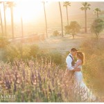 Keys Creek Lavender Farm Wedding Photo | Kristine Marie Photography
