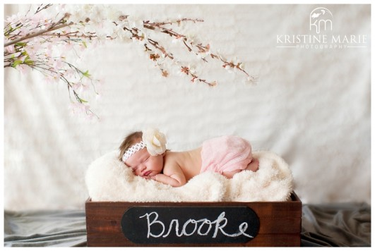 San Diego Newborn Baby Pictures Portraits Escondido